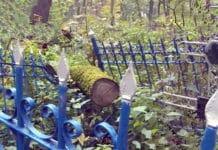 мусор на кладбище